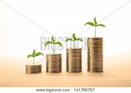 stacks of coins with sprouts close up