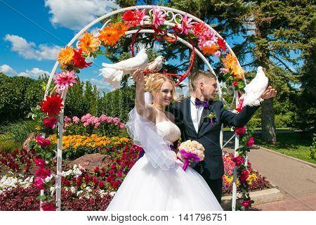 Bride and groom keep pigeons, wedding day