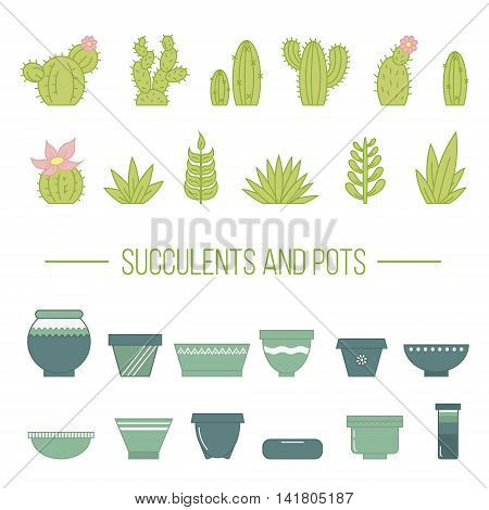 Set of succulent plants cactuses and pots. Linear botanical vector elements.