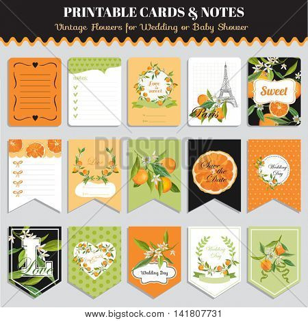 Vintage Orange Flowers Card Set. Birthday, Wedding, Baby Shower Tags. Vector Design. Summer Illustration.