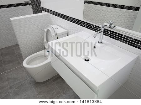 Toilet And Bathroom In Modern Style