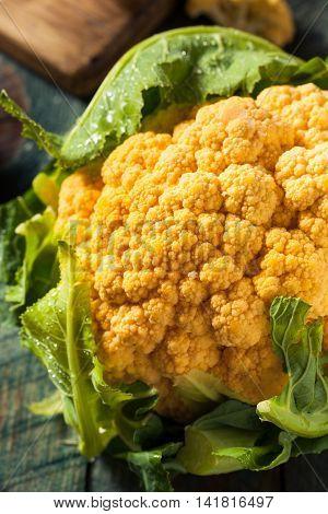 Raw Organic Orange Cauliflower