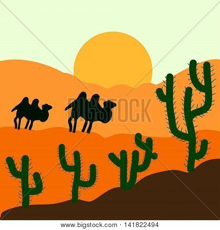 Cactus plants in desert sunset background. Vector illustration.