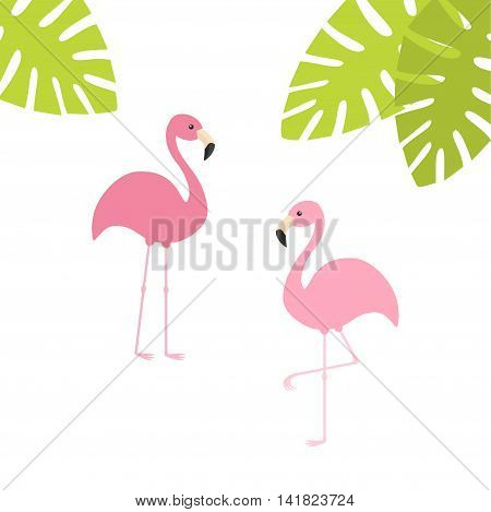 Two pink flamingo set. Exotic tropical bird. Zoo animal collection. Green palm leaves. Cute cartoon character. Decoration element. Flat design. White background. Isolated. Vector illustration