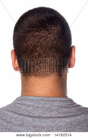 Back Of A Young Mans Head