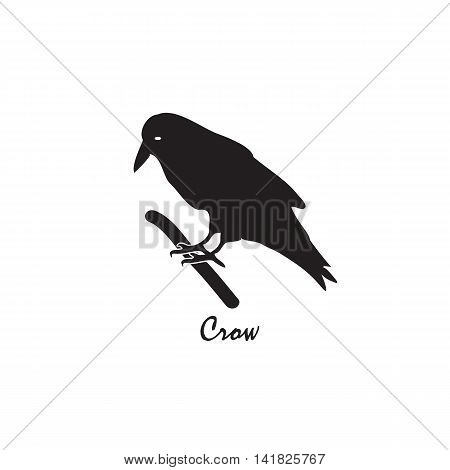 The black silhouette of a crow on a branch. Vector illustration on isolated background.