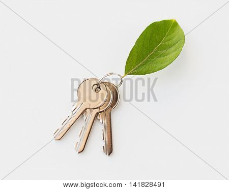 housing, environment and ecology concept - close up of house keys and green leaf trinket
