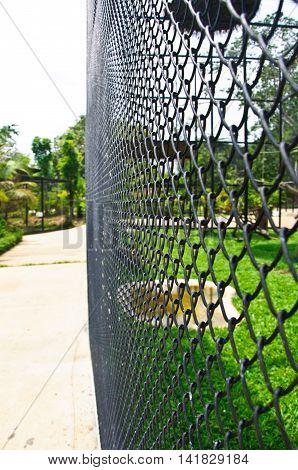 The metal birdcage zoo, background metal birdcage