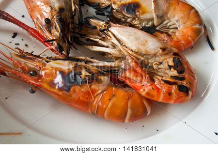 Shrimp on white plate ready to eat