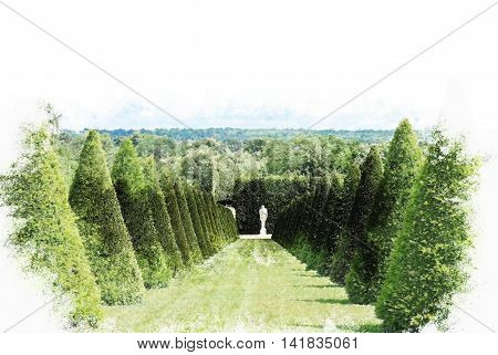 conical hedges lines and lawn, Versailles Chateau, France. Vintage painting, background illustration, beautiful picture, travel texture