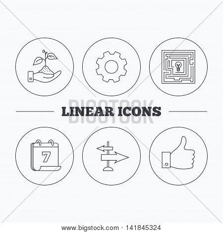 Save nature, thumb up and direction icons. Problem challenge, like linear signs. Flat cogwheel and calendar symbols. Linear icons in circle buttons. Vector