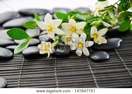 White Gardenia and stones on mat