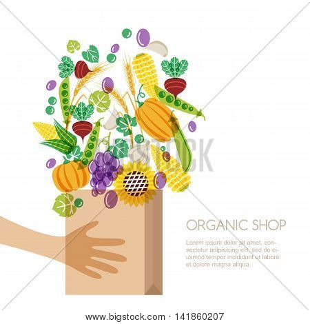 Shopping Bag With Vegetables And Cereal Grain In Human Hands. Autumn Harvest Vector Isolated Illustr