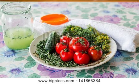 Vegetable composition for for salting: cucumbers, tomatoes, fennel, green onions and brine jar on a table