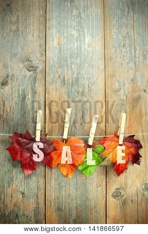Autumn sales leaves hanging on a clothes line with pegs against a wooden background