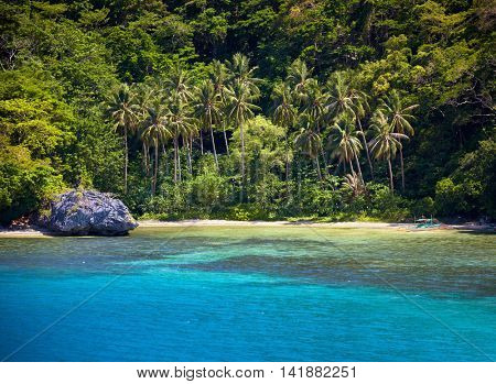 Blue bay and palm trees. El Nido, Palawan island, Philippines