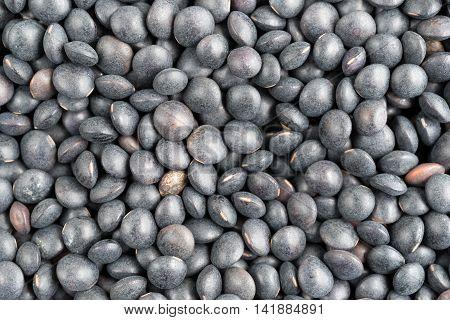 A very close view of black beluga lentils.