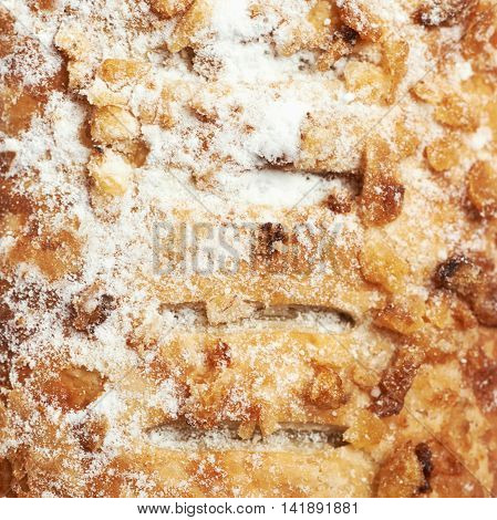 Close-up texture of a sweet bun's crust coated with nuts and powdered sugar