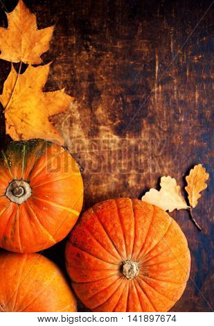 Autumn pumpkins with leaves on wooden board. Assortment of pumpkins with yellow autumn leaves