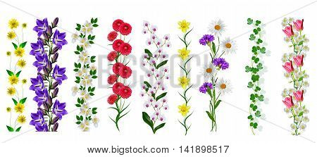 Sprigs of flowers isolated on white background.