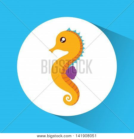 Sea horse cartoon over circle icon. Sea lifestyle. Colorfull Vector illustration