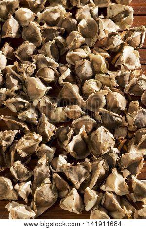 A Close Up Of Seeds Of Moringa