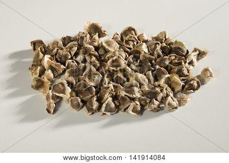 Organic Wingless Moringa,moringa Oleifera, Seeds Isolated On White Background