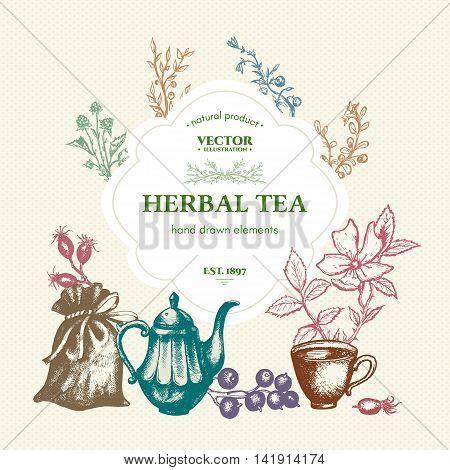 Herbal tea vintage template hand drawn ink vector