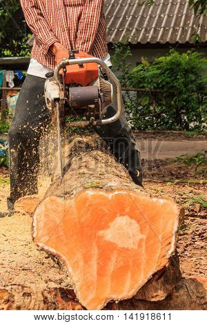 Blur motion of man cuts wood with engine sawing