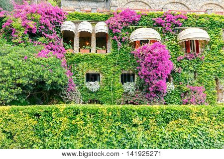 Italian house decorated with fresh flowers. Liguria. Cinque Terre.