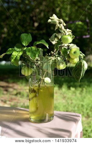 Apple branch in decanter on table in park