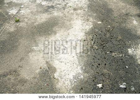 Old asphalt with sprouted vegetation, productive grunge background