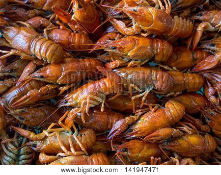 Many boiled crayfish lie heaped on a table