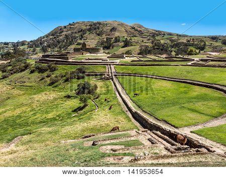 Ingapirca Inca wall and town largest known Inca ruins in Ecuador