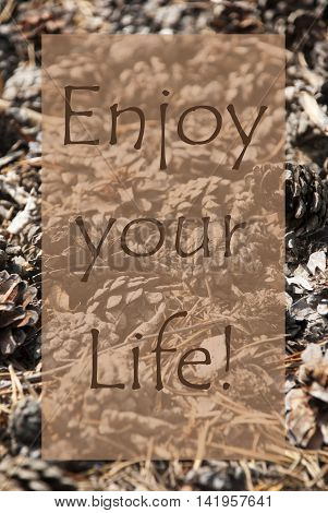 Vertical Texture Of Fir Or Pine Cone. Autumn Season Greeting Card. English Quote Enjoy Your Life