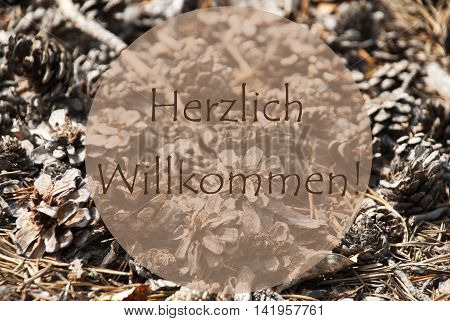 Texture Of Fir Or Pine Cone. Autumn Season Greeting Card. German Text Herzlich Willkommen Means Welcome