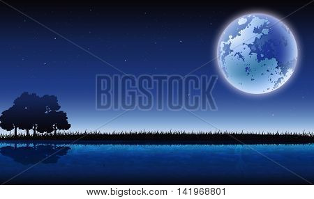 beauty night view with tree silhouette background