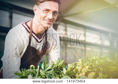 Smiling male gardener in brown apron and glasses working in garden center