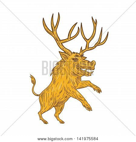 Drawing sketch style illustration of a wild pig boar razorback with antlers prancing viewed from the side set on isolated white background.