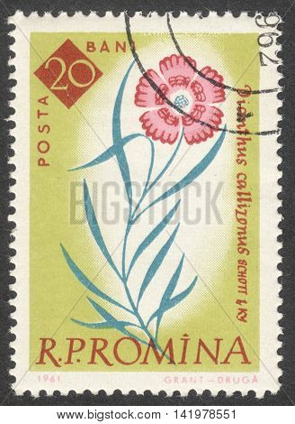 MOSCOW RUSSIA - CIRCA MAY 2016: a post stamp printed in ROMANIA shows Dianthus callizonus flower the series