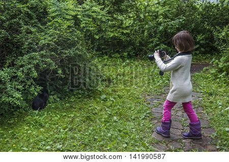 little girl shoot the black cat with big photo camera