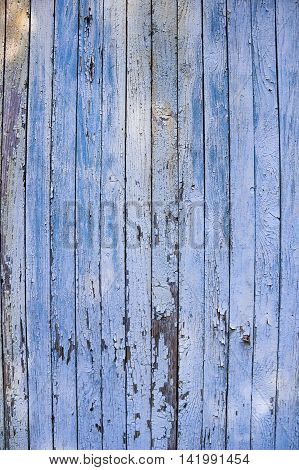 the blue old cracked paint on the wooden wall