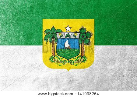 Flag Of Rio Grande Do Norte State, Brazil, Painted On Leather Texture