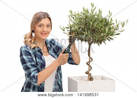Smiling young woman pruning an olive tree and looking at the camera isolated on white background
