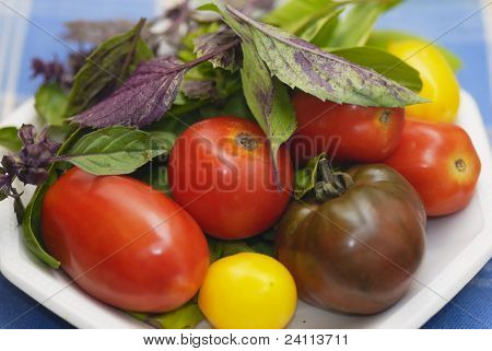 Plate Of Mixed Tomatoes With Purple And Green Basil Leaves.