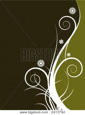 Flores Bg5554.Eps