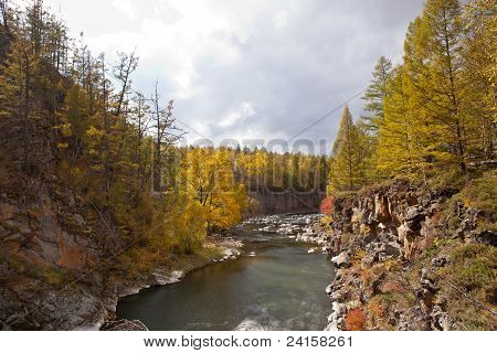 River And Forest In Autumn