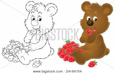 Bear cub with berries