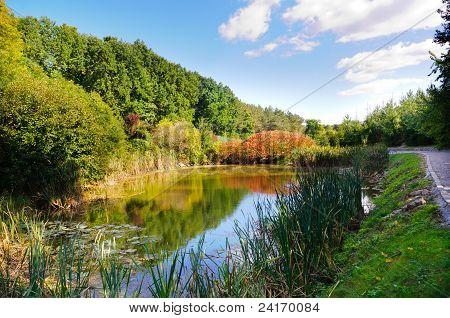 Lake In The Sophia Park
