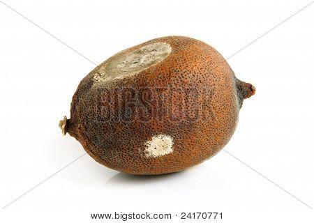 Moldy Dried Lemon